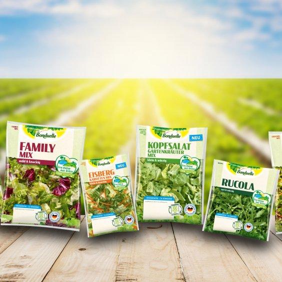 Salat-Ideen