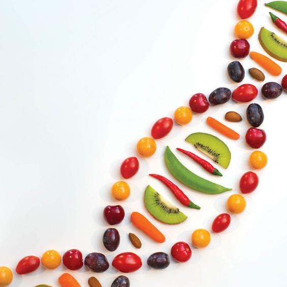 DNA based food