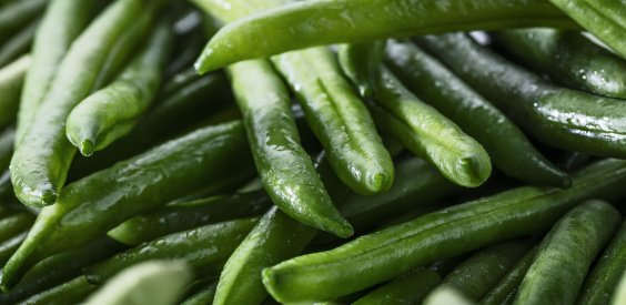 """Haricots verts très fins Minute® """"Barquettable"""""""