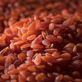 Pepitas de lenteja roja y zanahoria