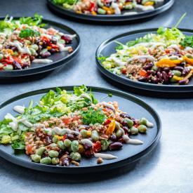 Plantbased Salads: Lebanese salad