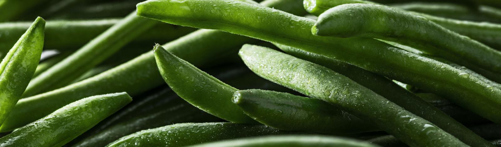 Haricots verts très fins BIO Minute®